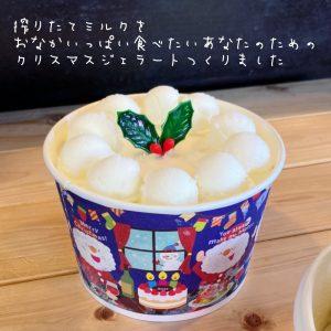 CHICHIYA一番人気の搾りたてミルクをつめこんだ新商品のクリスマスジェラートケーキ!